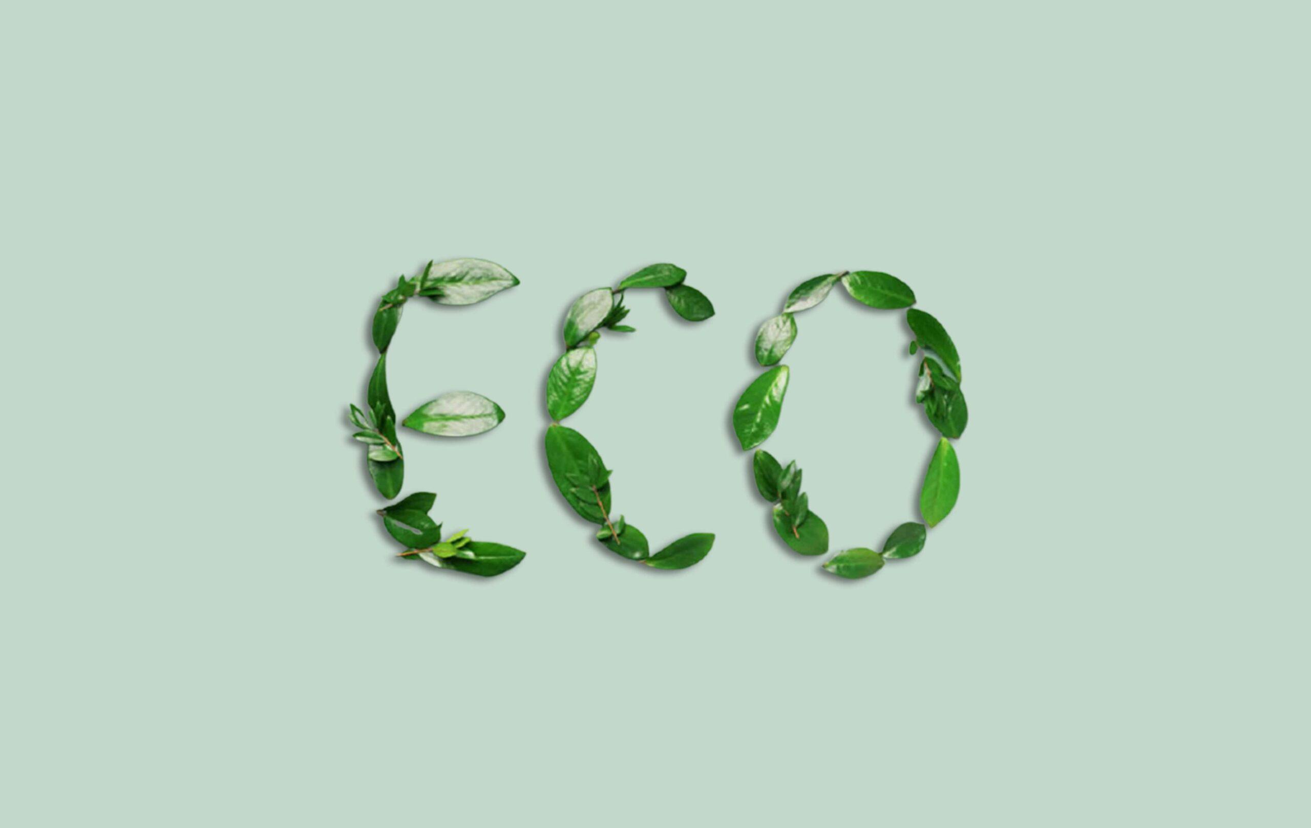 Kosmetik Eco-Friendly Yang Sangat Baik Untuk Tubuh dan Lingkungan